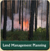 land management planning